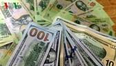 Giá USD trong nước vẫn ổn định sau quyết định hạ lãi suất của FED. (Ảnh minh hoạ: Trần Ngọc/VOV.VN)