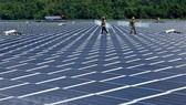 Nhà máy điện Mặt Trời do Công ty Thủy điện Đa Nhim-Hàm Thuận-Đa Mi làm chủ đầu tư được đưa vào vận hành cuối tháng 5/2019. (Ảnh: Ngọc Hà/TTXVN)