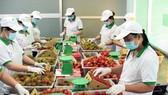 Nâng cao năng lực sản xuất để đón đầu các cơ hội thương mại là khuyến nghị của nhóm nghiên cứu