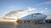 Sẽ cấp lại giấy phép cho Bamboo Airways