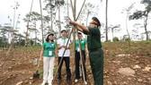 Thực hiện di chúc lời Bác dạy, Khu di tích K9 trồng hàng trăm cây Chò