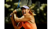 Sharapova rút lui khỏi mùa giải sân cỏ
