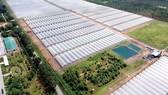 范文蓋鄉的大面積果蔬種植區可以發展成為體驗與野外旅遊。
