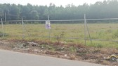 阿里巴巴公司在隆城縣發售的項目地皮。