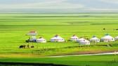 順捷旅行社推出探索蒙古暑期旅程
