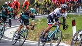 Mặc chiếc áo 7 sắc cầu vòng dành cho nhà VĐTG, Sagan vẫn thua tan nát ở Tirreno-Adriatico