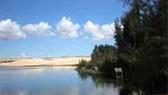 An oasis nestled in the lap of white desert sands