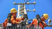 Chính phủ yêu cầu đảm bảo cung ứng, không cắt điện