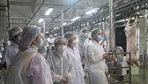 Đề xuất lập Sở An toàn thực phẩm