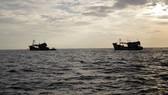 Hai ngư dân tàu cá Bình Định mất tích trên biển chưa rõ nguyên nhân
