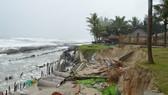 Bờ biển Đà Nẵng, Quảng Nam sạt lở nghiêm trọng do mưa to, gió lớn