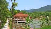 Quảng Nam bùng phát xây dựng trái phép