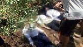 Thi thể 3 nữ sinh sau khi được đưa lên khỏi vực Khe Dài. Ảnh: MINH PHONG