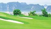 Chủ tịch FLC Trịnh Văn Quyết: Mỗi tỉnh sẽ có ít nhất 1 sân golf trở lên