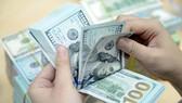 Năm 2019, đồng USD tăng giá không nhiều, thậm chí có thể giảm