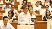 ĐB Nguyễn Lân Hiếu (An Giang) phát biểu tại phiên thảo luận sáng ngày 30-5. Ảnh: TTXVN