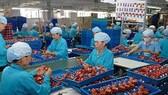 Kinh tế HN phát triển ổn định nhưng chưa vững