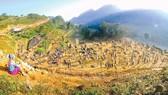 Đặc sắc chợ phiên Lào Cai