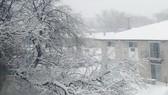 Tuyết nhấn chìm Chicago, 500 chuyến bay bị hủy