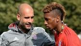 Hannover- Bayern Munich: Vẫn đầy quyết tâm