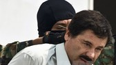 Trùm ma túy El Chapo lại bị bắt