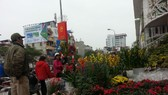 Hoa Trung Quốc lấn lướt chợ Tết