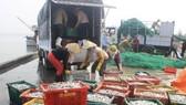 Kiểm soát thủy sản xuất khẩu từ 4 tỉnh có cá chết