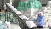 700 tỷ đồng xây kho lương thực hiện đại