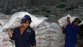 Xây dựng thương hiệu gạo xuất khẩu VN