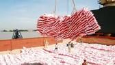 Xuất khẩu 6,2 triệu tấn gạo