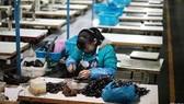 Tháng 11: Lạm phát Trung Quốc giảm mạnh