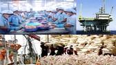 Thương mại Việt Nam-Mexico đạt hơn 1 tỷ USD