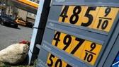 Hoa Kỳ tăng kiểm soát thị trường xăng dầu