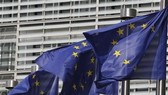 EU đạt đồng thuận quy định quản lý NH