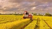 EU cam kết tài trợ 1 tỷ USD cho Việt Nam