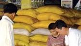 Nhập khẩu phân bón, thức ăn gia súc giảm
