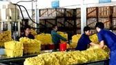 Xuất khẩu cao su: Không dễ loại tiểu ngạch