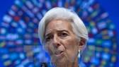 Giám đốc IMF ra tòa