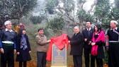 Lễ công nhận Cây di sản tại Suối Giàng, Yên Bái vào năm 2016 của Hội Bảo vệ Thiên nhiên và Môi trường Việt Nam. Ảnh: TTXVN