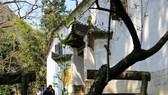 Dinh thự nhà họ Vương ở Hà Giang