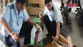 Khởi tố vụ buôn lậu hơn 1,3 tấn ngà voi ở TPHCM