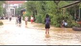 Quảng Ngãi: Lũ dâng cao, gần 1.000 học sinh nghỉ học