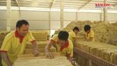Dự án chế biến sâu cao lanh tại Lâm Đồng