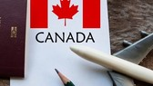Firms ask for preferential tax treatment for export to Canada