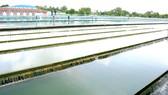 Bể chứa nước của Nhà máy nước Thủ Đức. Ảnh: MAI MINH