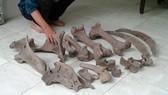 Người dân Bến Tre phát hiện nhiều mảnh xương lạ dưới mương nước