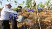 Đồng chí Nguyễn Thị Quyết Tâm tham gia trồng cây
