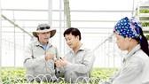 Đầu tư công nghệ cao cho nông nghiệp