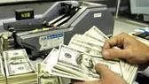 Ngày 5-1, tỷ giá trung tâm tăng 11 đồng/USD