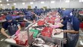 AmCham: TPP thúc đẩy Việt Nam tăng tốc hội nhập